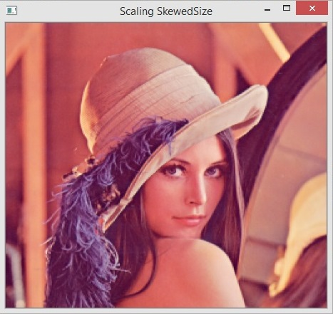 How to Scale Image with Python OpenCV